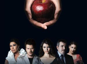 300x450 1473 300x220 - Запретная любовь / 2008 / Турция