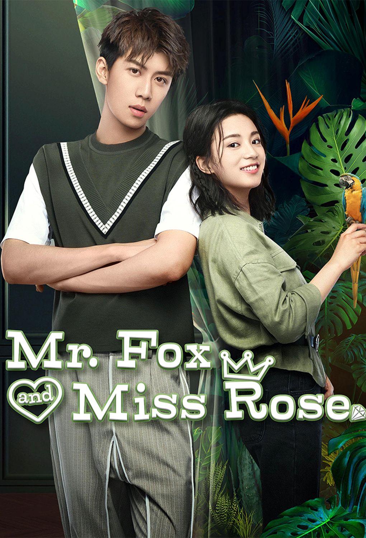 Mister Lis i miss Roza - Мистер Лис и мисс Роза