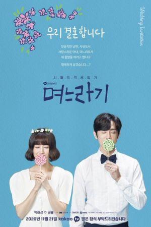 The In Laws - Дорама: Родственники / 2020 / Корея Южная