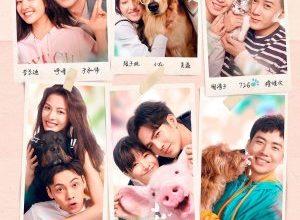 Chong ai 300x220 - Обожание ✸ 2019 ✸ Китай