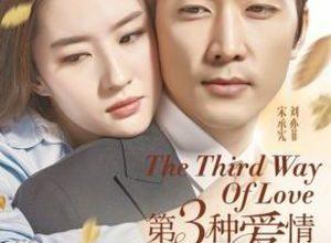 Di san zhong ai qing 300x220 - Третий вид любви ✸ 2015 ✸ Китай
