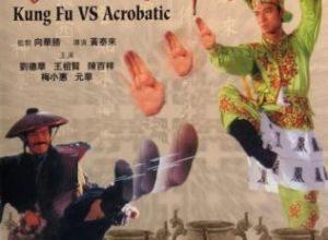 Ji juen gai jong yuen choi 300x220 - Кунг-фу против акробатики ✸ 1990 ✸ Гонконг
