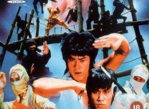 Ninja Hunter 300x220 - Ниндзя: Последняя дуэль ✸ 1986 ✸ Тайвань