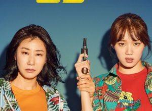 x1000 3 32 300x220 - Мисс и миссис Коп ✸ 2019 ✸ Корея Южная