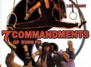 Gong fu qi jie 300x220 - 7 заповедей кунг-фу ✸ 1979 ✸ Гонконг
