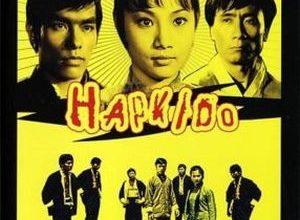 Hap Ki Do 300x220 - Леди кунг-фу ✸ 1972 ✸ Гонконг