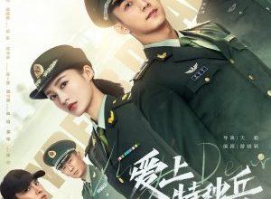 My Dear Guardian 300x220 - Любимая военная форма ✸ 2021 ✸ Китай
