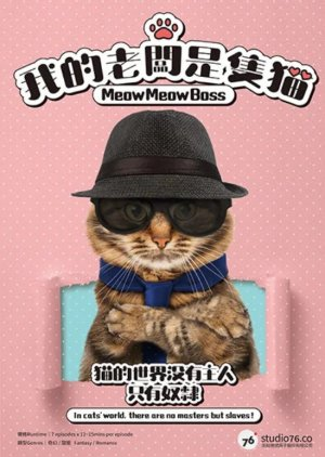 My Boss is a Cat - Мой босс - Кот! ✸ 2021 ✸ Тайвань