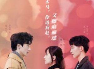 Hidden Marriage Love 300x220 - Тайная любовь в браке ✸ 2021 ✸ Китай